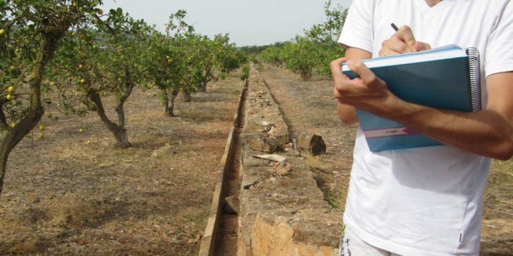 Ibiza_Aug_Survey-e1439734303920-768x1024